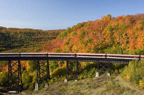 The Agawa Canyon Train crosses a bridge through a forest with leaves changing colours
